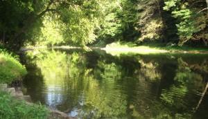 Tunk Creek