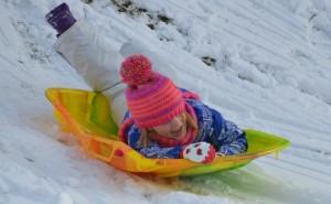sophie sled